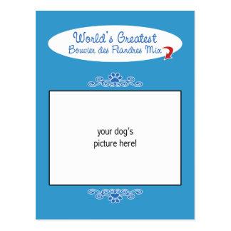 De Werelden Greatest Bouvier des Flandres Mix van Briefkaart
