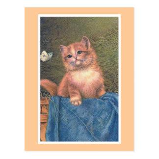 """De Wijnoogst van de gember van het Katje en """"van Briefkaart"""