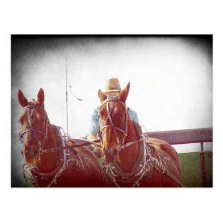 De Wijnoogst van Faux van het Team van Amish van Briefkaart