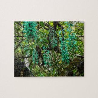 De Wijnstok van de jade, Botanische Tuin, Maui, Legpuzzel