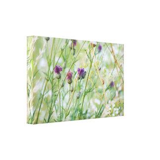 De wilde bloemen van de lente canvas afdruk