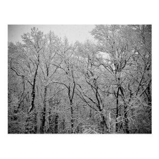 De winter duurt adem briefkaart