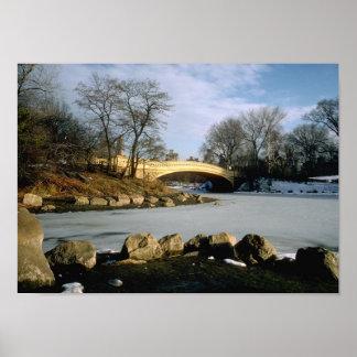 De Winter NYC van het Central Park van de Brug van Poster