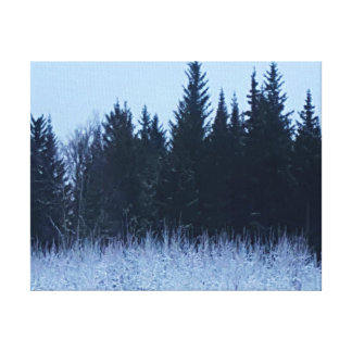 De winter van Alaska Canvas Afdruk