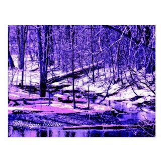 De Winter van Michigan Briefkaart
