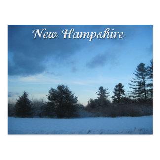 De winter van Newhampshire Briefkaart