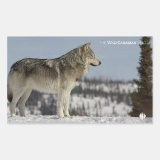 De winter - Wolf Rechthoekige Sticker