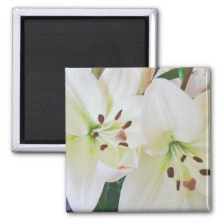 De witte Bloemen van het Huwelijk bewaren de Vierkante Magneet