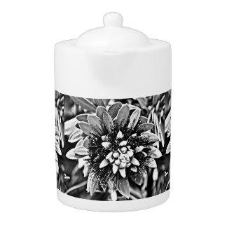 De witte en Zwarte Pot van de Thee van de Cactus
