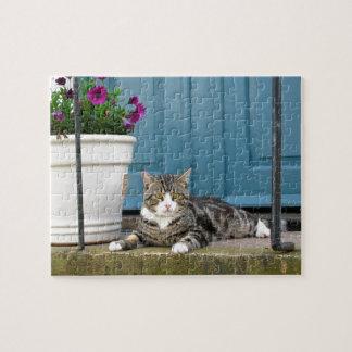 De witte Grijze Kat van de Tijger op de Voor Foto Puzzels