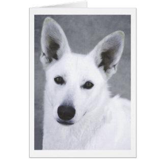 De witte Hond van de Duitse herder Kaart