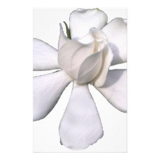 De witte Knop 201711g van Gardenia Briefpapier