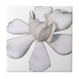 De witte Knop 201711g van Gardenia Keramisch Tegeltje