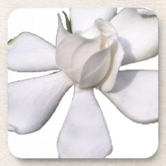 De witte Knop 201711g van Gardenia Onderzetter