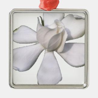 De witte Knop 201711g van Gardenia Zilverkleurig Vierkant Ornament