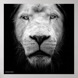 De witte leeuw - The white leeuw Poster