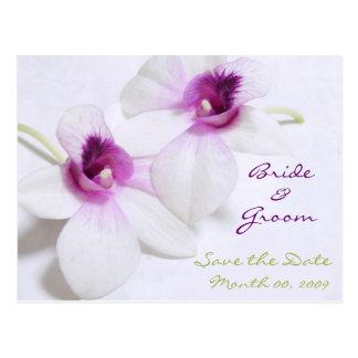 De witte Orchidee bewaart de briefkaarten van de
