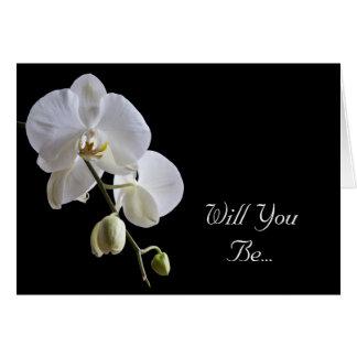 De witte Orchidee op Zwarte zal u Mijn Kaart