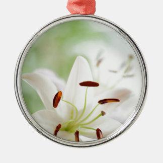 De witte volledig Open Bloem van de Lelie Zilverkleurig Rond Ornament