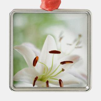 De witte volledig Open Bloem van de Lelie Zilverkleurig Vierkant Ornament