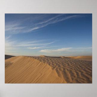 De Woestijn van Tunesië, de Sahara, Douz, Groot Du Poster