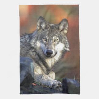 De wolf theedoek