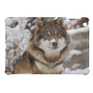 De Wolf van de Sneeuw van de winter iPad Mini Hoesje