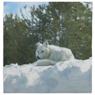 De Wolf van het spook Katoenen Servetten