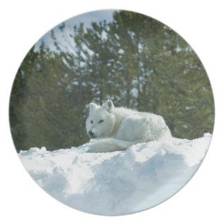 De Wolf van het spook Melamine+bord