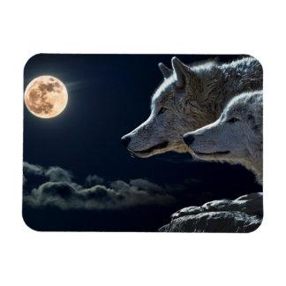De Wolven die van de wolf bij de Koelkast Magn Magneet