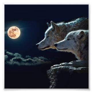 De Wolven die van de wolf bij de Volle maan huilen Fotoafdrukken