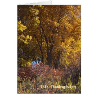 De Zaken van het Landschap van de herfst danken u Briefkaarten 0