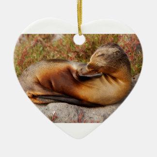 De Zeeleeuw van de Galapagos Keramisch Hart Ornament