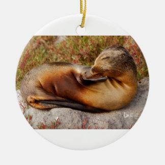 De Zeeleeuw van de Galapagos Rond Keramisch Ornament