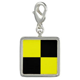 """De zeevaart Brief L """"Lima """" van de Code van het Charm"""