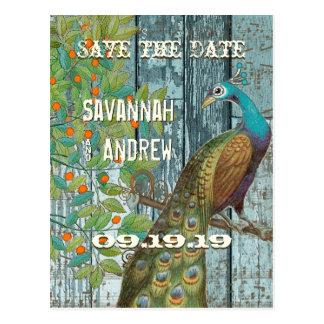 De Zitting van de Vogel van de Liefde van de pauw Briefkaart