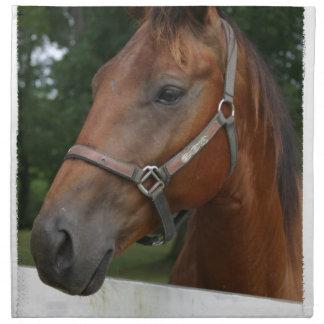 De zoete Reeks van het Paard van de Kastanje van Servet