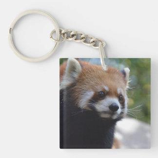 De zoete Rode Panda draagt Sleutelhanger