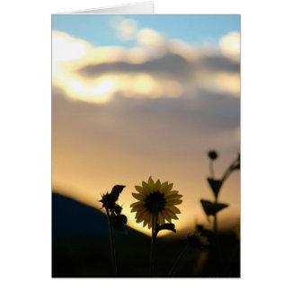 De Zonnebloem van de ochtend Kaart