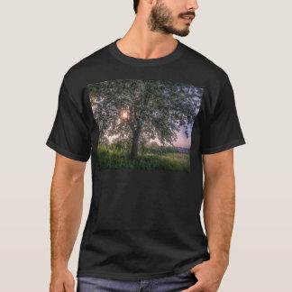 De zonnestralen die van de zomer door boomtakken t shirt