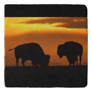 De Zonsondergang van de bizon Trivet
