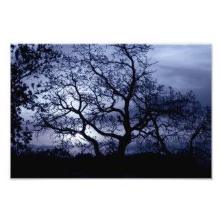 De Zonsondergang van de middernacht Foto