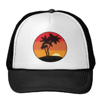 De Zonsondergang van de palm Petten Met Netje