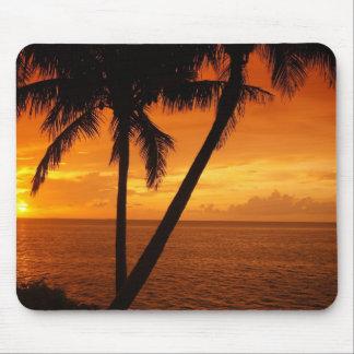 De Zonsondergang van de Sleutel van Florida Muismatten