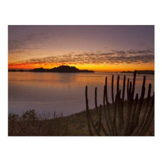 De zonsopgang over Isla Danzante in de Golf van 2 Briefkaart