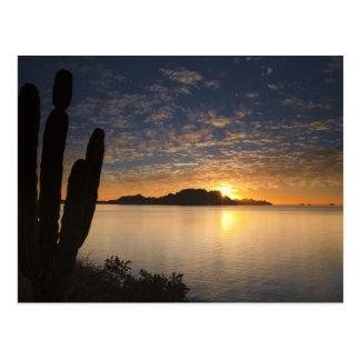 De zonsopgang over Isla Danzante in de Golf van Briefkaart
