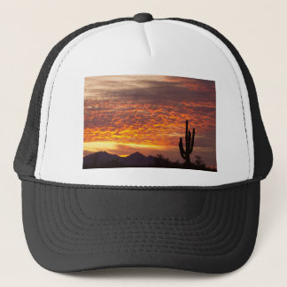 De Zonsopgang van Arizona November met Saguaro Trucker Pet