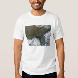 De zuidelijke Verenigde Staten van Amerika Shirt
