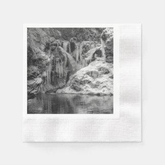 De zwart-witte Bevroren Afgetapte Waterval van de Wegwerp Servet