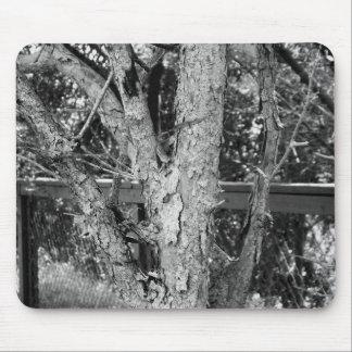 De zwart-witte Foto van de Natuur van de Boom Muismat